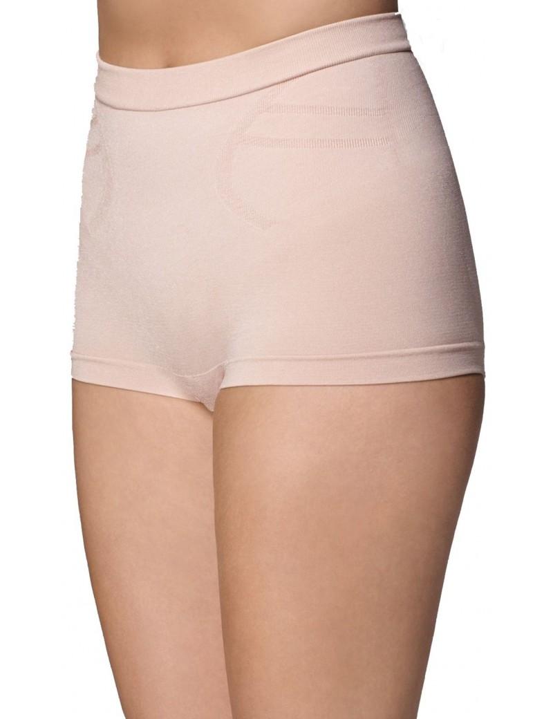 Spanx - Slimmer & Shine Hip Nipper Panties - Style 2132